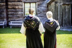 Dräktstämma i Järvsö år 2015. Foto: Robert Jonsson.
