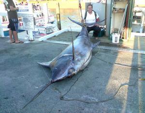 """2007 drog Östersundsbon Johan Nordin upp en svärdfisk på drygt 400 kilo. """"I Nya Zeeland var detta otroligt stort"""", säger han. Foto: Privat"""