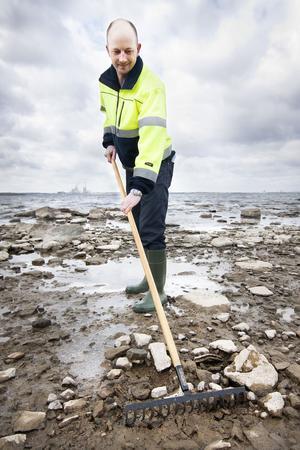 finkammar. Stefan Kusbom på Markbyggarna finkammade Römarens stränder med kratta i jakt på oljerester efter det stora utsläppet av tjockolja från fartyget Snow Star i höstas.