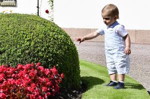 Prins Oscar föddes den 2 mars 2016.