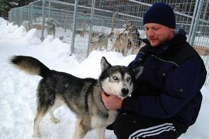 Wilbert Golverdingen stortrivs med sina hundar i snörika Nyhem. Han har byggt en mycket prydlig hundgård för familjens 18 siberian husky-hundar.  Foto: Ingvar Ericsson