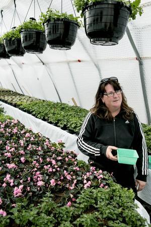 Frölådor är bra när man ska så fröna flera frön. Camilla Börjes delar gärna med sig av tips, men betonar att det gäller att pröva sig fram i trädgården.