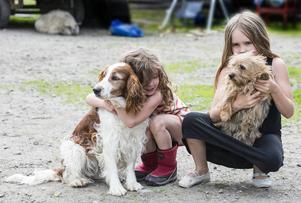Elsa och Astrid med hundarna Siri och Holly.