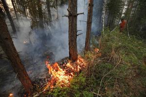 Frivilliggrupper och hemvärnet såg till att brandmännen servades med mat när de jobbade i skogen.