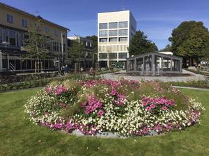 Blomsterfontänen i Jansasparken 2016. Bild: Sandvikens kommun
