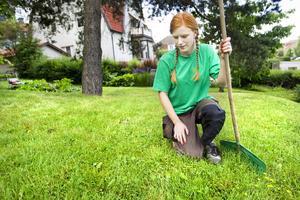 välmående. En tät gräsmatta som mår bra ger mindre utrymme för ogräs så som maskrosor och klöver.