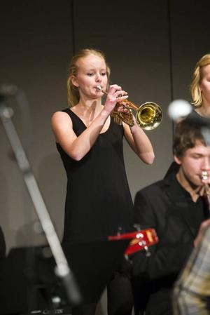 Trumpetare ur Bollnäsbandet Oden Bigband.