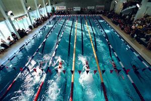 Sälsimmet skapar minnen hos många av distriktets simmare som deltagit genom åren och den här bilden här från 2001.
