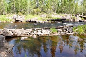 Rester av en träkista från 1800-talet. Kistor byggdes för att lättare kunna leda timret. 1910 började man att bygga kistor av sten. I naturreservatet tror Börje Nilsson också att det byggdes en såg runt 1762, men han har ännu inte hittat lämningar från den.