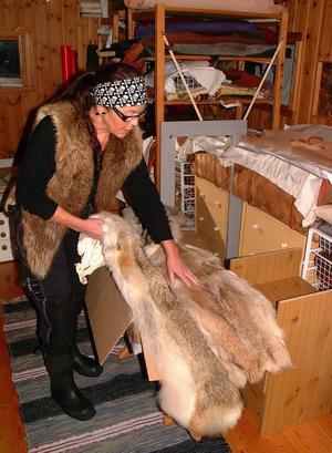 När LT var på plats hade Ewa just fått hem en kartong prärievargskinn som hon skulle göra någonting snyggt av.