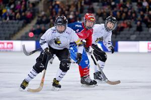 AIK slog ut svenska mästarna Kareby i två raka matcher. Foto: TT Arkiv