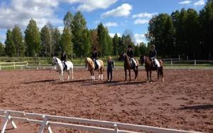 Leksands segrande lag i ponnydressyr. Foto: Privat