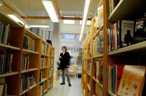 Elizabeth Lindström är bibliotekarie på det medicinska biblioteket. Numera träffar hon mest anställda på landstinget.