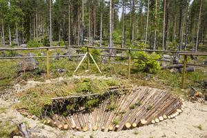 Den renoverade älggropen ingår i ett system av nio fångstgropar.