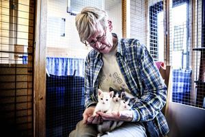 Ulla Björnudd tillsammans med tre av katthemmets kattungar.