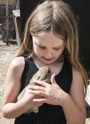 Astrid gosar med en av gårdens kaninungar.