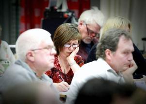 Karin Thomasson (MP) hade trott att en fullmäktigemajoritet på torsdagskvällen skulle ha röstat igenom hur den nya multiarenan slka se ut.