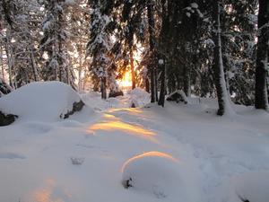 Solnedgång kall vinterdag.