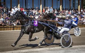 Sjö Vinn håller undan till seger i Svenskt Kallblodskriterium. Ute i spåren, med nummer 2, spurtar favoriten Tand Kraft till en andraplats efter en kostsam galopp tidigare i loppet.