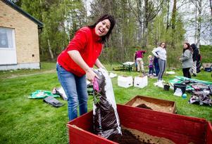 Jessica Sonneryd förbereder för morötterna som ska sås i en av de nya pallkragarna.