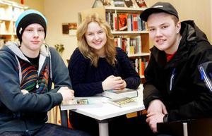 Daniel Evertsson från Frösön och Frida Bergvall från Hammarstrand är nöjda med läsprojektet, inte Dennis Blom från Österåsen. De går alla i FT13A.