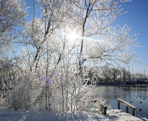 Sol som strilar genom snötäckta genar samt lite öppet vatten. bra förutsättningar för en fin bild.