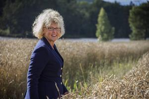 Här mitt bland råvaran bor Viola Adamsson. Vid Ljusnan mellan Segersta och Bollnäs.