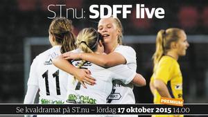 SDFF leder i