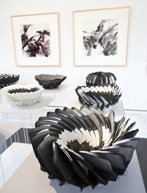Wang Leyuns papperskonst.