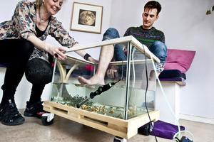 Marie-Louise Göthlin hjälper GD:s Nils Palmeby att få ner fötterna i akvariet där de hungriga garra rufa–fiskarna väntar sig ett skrovmål.