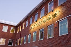 Åsa Sundström har jobbat som biträdande rektor på Slottegymnasiet sedan september 2018, dessförinnan var hon rektor för Trägymnasiet.