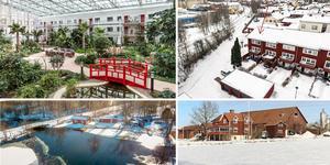 Ett montage med några av de hus som finns med på Klicktoppen för vecka 11, sett till de hus i Dalarna som fått flest klick på bostadssajten Hemnet under förra veckan.