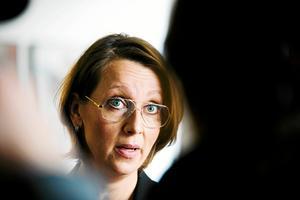 Under den 23:e och sista rättegångsdagen i hovrätten, höll Johanna Möllers försvarare, advokat Amanda Hikes sitt slutanförande.