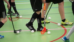 Många menar att det krävs insatser från samhället för att få fler unga att delta i ungdomsidrott eller andra typer av fysiska aktiviteter.