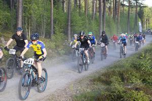 Motionsklassen har i årets upplaga av Helsingecupen 50 anmälda deltagare.
