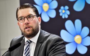 Sverigedemokraterna, med partiledaren Jimmie Åkesson, vill ha ett snabbspår för poliser.