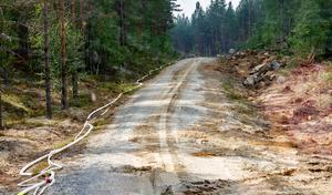 En av brandgatorna, denna väster om Lassekrog. Här har befintlig väg utnyttjats och slang lagts ut.