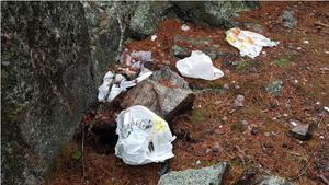 Plastpåsar har en nedbrytningstid på 600 år, enligt forskarna och en PET-flaska kan överleva i tusen år. Plastavfall är en vanlig syn i naturområden i Norrtälje. Här i skogspartiet runt Norra bergen. Foto: Christoffer Hallbäck