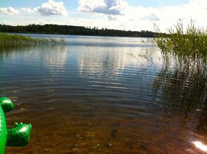 Giftiga alger gör att folk avråds från att bada i sjön Noen.