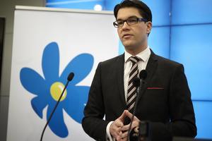 Sverigedemokraternas partiledare Jimmie Åkesson, i november 2012. Foto: Fredrik Persson / SCANPIX.