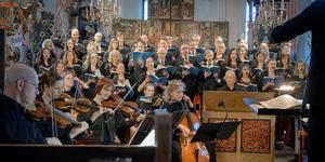 Johannespassionen av J S Bach gavs i Västerås domkyrka på palmsöndagen. Mariakören fick i Joakim Olsson Kruses ledning en tuttiklang som var nyanserad i både volym och tempo. Stockholms Bachsällskap var en viktig partner.Foto: Lennart Hyse