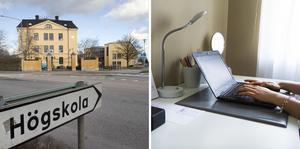 Högskolor, kommunal vuxenutbildning och annan utbildning för vuxna kan nu steg för steg återgå till undervisning på plats, i många fall från starten av höstterminen. Här ses internationella studenter välkomnas i Lund. Arkivbilder.