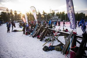 Massvis med skidor.