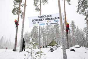 En banderoll har satts upp vid militärtältet.