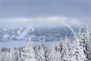 Utsikt från Renfjället en gråmulen dag.