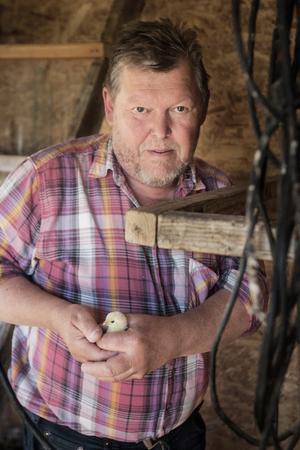Jan-Olov Björklund öppnade för fyra år sedan Hummelsvedjans fjärilsväg – en självguidad stig för allmänheten. Har du tur kan du få syn på den sällsynta asknätfjärilen.