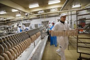 Den processade köttblandningen packas i får- eller gristarmar, inför vidare paketering.