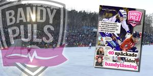 På onsdagen publiceras Bandypuls stora bilaga inför säsongen. Bild: TT.