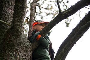 Caspian Hjorth visar hur han försökte klättra i träd för att speja efter älgar under sin första jakt.