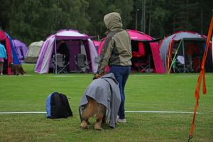 Ägare och hund tar skydd från regnet.